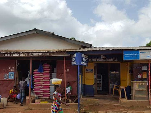 wie-zijn-wij-over-liberia-realiteit-mineke-foundation